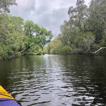 Everglades Kayak