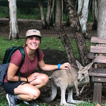 The classic kangaroo picture
