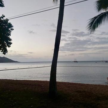New Years Day sunset swim